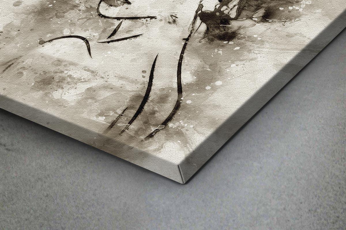 Πίνακας καμβάς ΠΟΡΤΡΑΙΤΟ - ΑΣΠΡΟΜΑΥΡΗ ΖΩΓΡΑΦΙΑ
