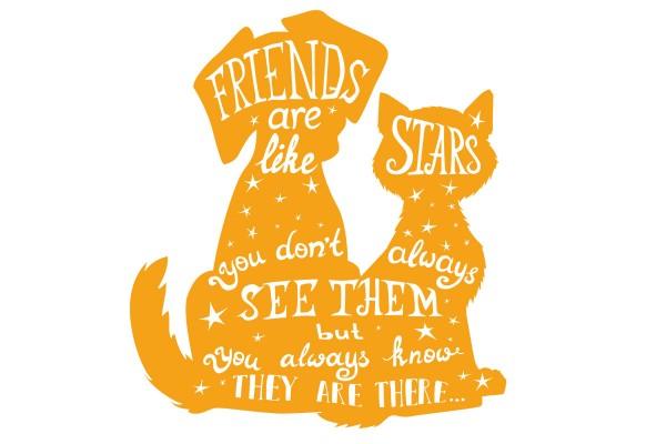 ΣΚΥΛΑΚΙΑ, FRIENDS LIKE STARS