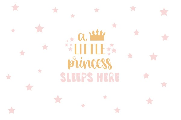 LITTLE PRINCESS SLEEPS HERE
